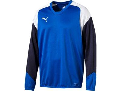 Puma Herren Sweatshirt Esito 4 Training Sweat Blau