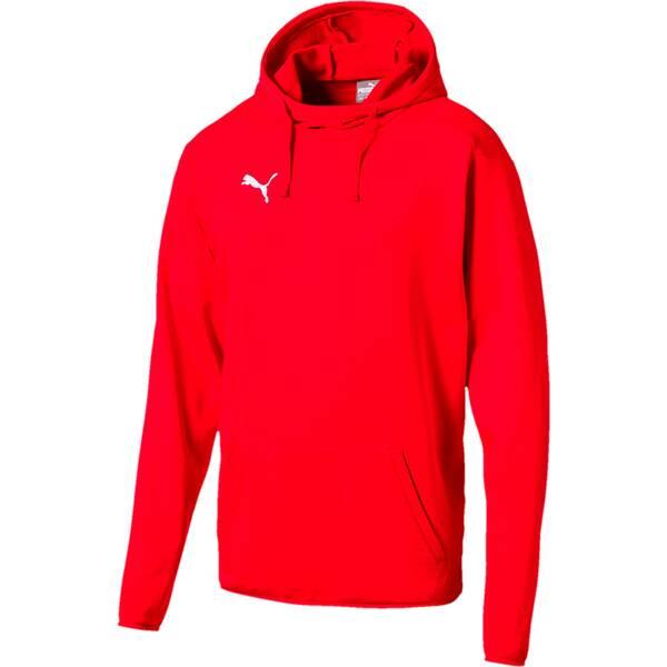 Puma Herren Sweatshirt LIGA Casuals Hoody