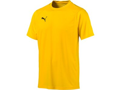 PUMA Herren T-Shirt LIGA Training Jersey Gold
