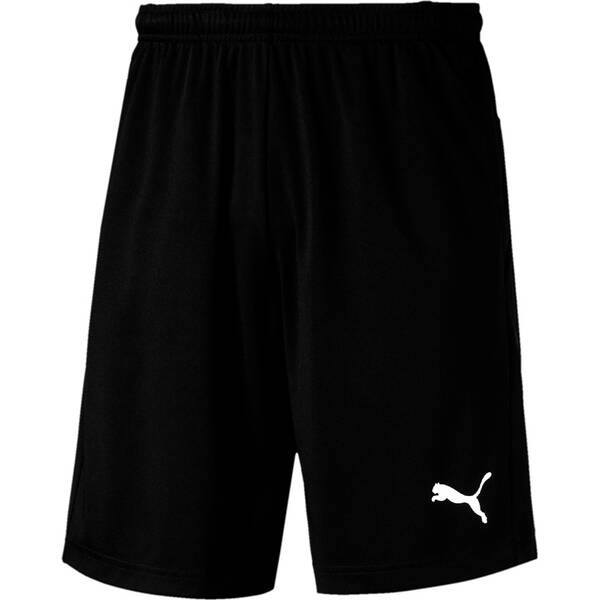 PUMA Herren Fußballshorts LIGA Training Shorts