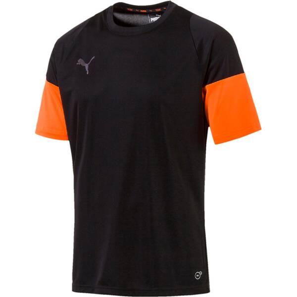 PUMA Herren Fantrikot FTBLNXT | Sportbekleidung > Sportshirts > Fanshirts | Puma