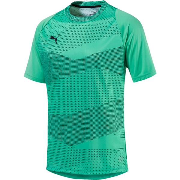 PUMA Herren FTBLNXT GRAPHIC SHIRT CORE