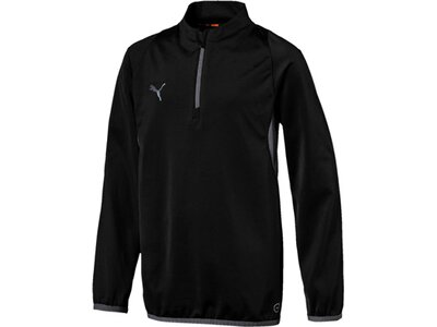 PUMA Kinder Kapuzensweat ftblNXT 1/4 zip top Jr Schwarz