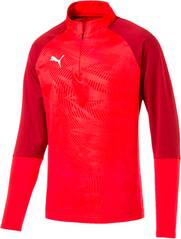 PUMA Herren Sweatshirt CUP Training 1/4 Zip T Core