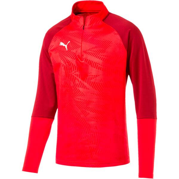 PUMA Herren Sweatshirt CUP Training 1/4 Zip T Core Rot
