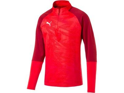 PUMA Herren Sweatshirt CUP Training 1/4 Zip T Core Rot