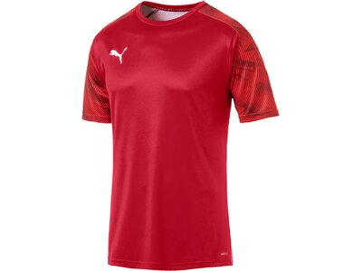 PUMA Herren T-Shirt CUP Training Jersey Rot