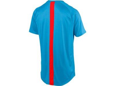 PUMA Herren T-Shirt ftblNXT Shirt Blau