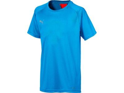 PUMA Kinder T-Shirt ftblNXT Shirt Jr Blau