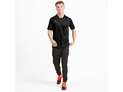 PUMA Herren T-Shirt ftblNXT Shirt Schwarz