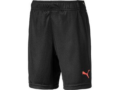 PUMA Kinder Shorts ftblNXT Shorts Jr Schwarz