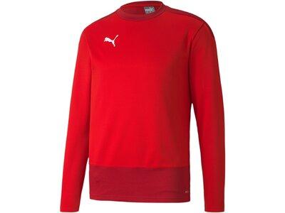 PUMA Herren Sweatshirt teamGOAL 23 Training Rot