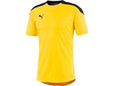 PUMA Fußball - Textilien - T-Shirts ftblNXT Trainingsshirt Gelb