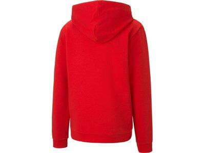 PUMA Fußball - Teamsport Textil - Sweatshirts teamGOAL Kapuzensweatshirt Kids Rot