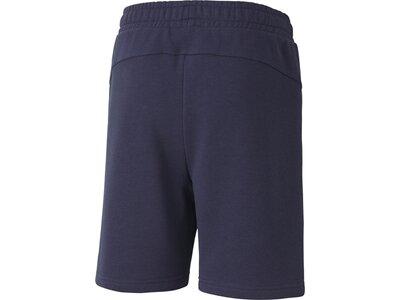 PUMA Kinder Shorts teamGOAL 23 Casuals Grau
