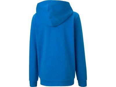 PUMA Kinder Sweatshirt teamGOAL 23 Casuals Blau