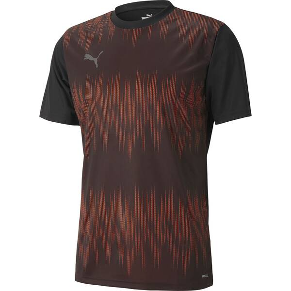 PUMA Herren Fantrikot ftblNXT Graphic Shirt Core