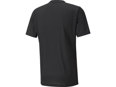 PUMA Herren Fantrikot ftblNXT Graphic Shirt Core Grau