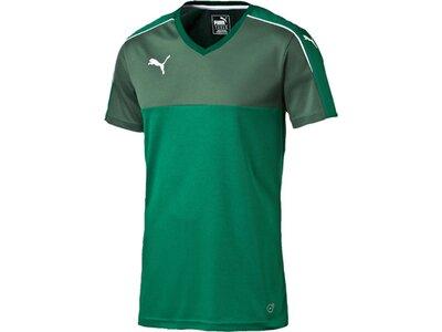Puma Herren Fußballtrikot Accuracy Shortsleeved Shirt Grün