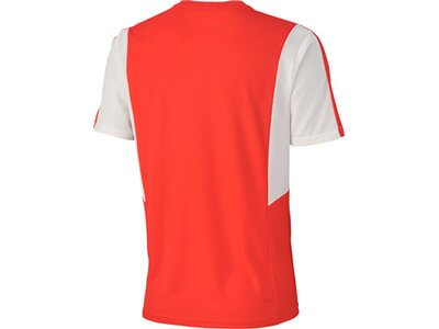 Puma Herren Fußballtrikot Dominate SS Shirt Grau