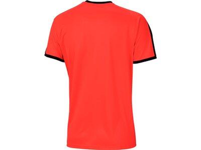 PUMA Herren Trikot LIGA Jersey Striped Rot
