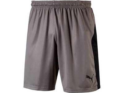 PUMA Herren Fußballshorts LIGA Shorts Grau
