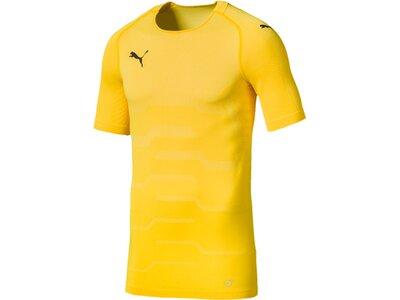 PUMA Fußball - Teamsport Textil - Torwarttrikots FINAL evoKNIT Torwarttrikot Gold