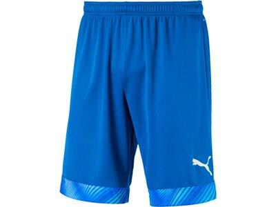 PUMA Herren Fußballshorts CUP Shorts Blau