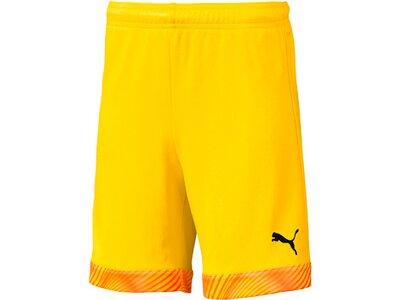 PUMA Kinder Fußballshorts CUP Shorts Jr Gold