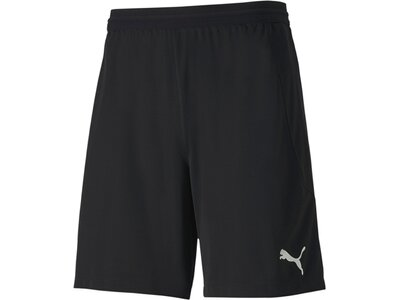 PUMA Herren Shorts teamFINAL 21 knit Schwarz