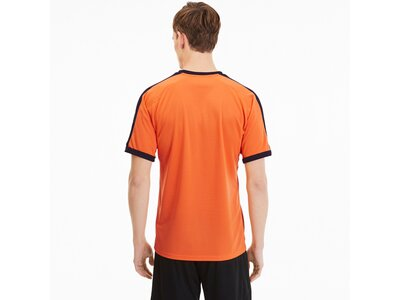PUMA Fußball - Teamsport Textil - Trikots teamFINAL Indoor Trikot kurzarm Braun