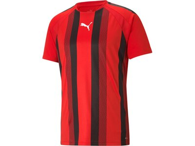 PUMA Herren Fanshirt teamLIGA Striped Jersey Rot
