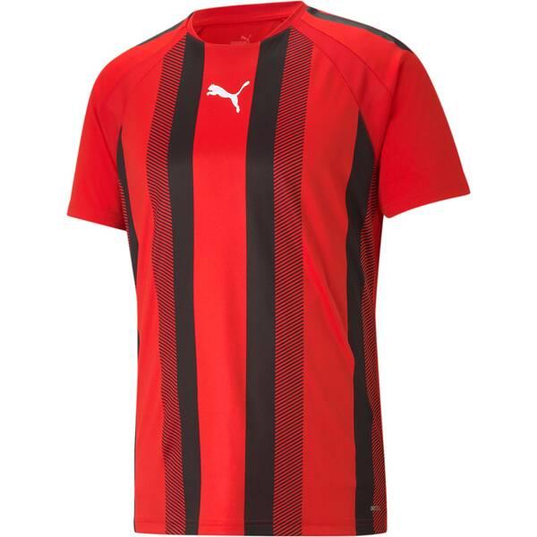 PUMA Herren Fanshirt teamLIGA Striped Jersey