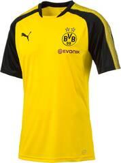 Puma Herren Shirt BVB Training Jersey mit Spons