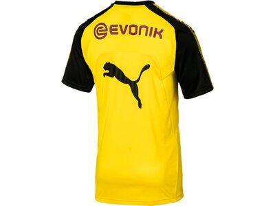 Puma Herren Shirt BVB Training Jersey mit Spons Schwarz