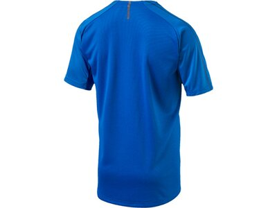 PUMA Herren T-Shirt FIGC Italia Training Jersey SS Blau
