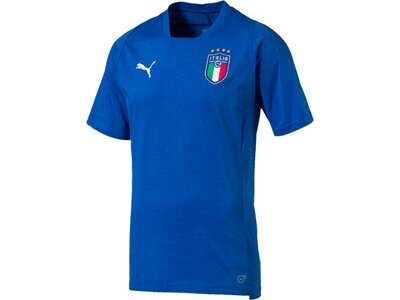 PUMA Herren T-Shirt FIGC Italia Casual Performance Blau