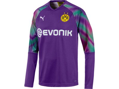 PUMA Herren Torwart-Trikot BVB LS GK Shirt Replica Rot
