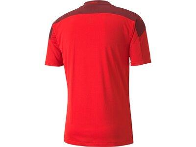 PUMA Herren SFV Home Shirt Replica Rot