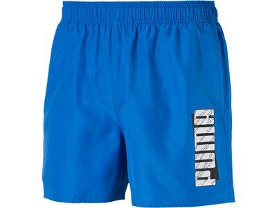 PUMA Herren Shorts ESS Summer Blau