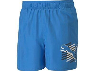 PUMA Herren Shorts ESS Summer Shorts Graphi Blau