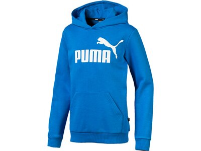 PUMA Kinder Hoodie ESS Logo Hoody TR B Blau