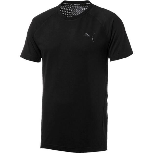PUMA Herren T-Shirt Evostripe Move Tee