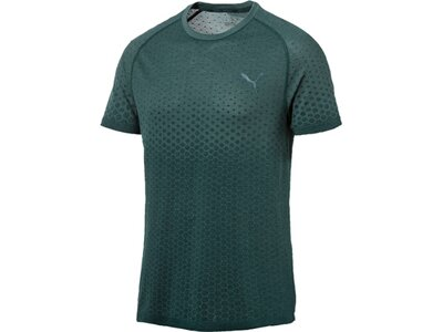 PUMA Herren T-Shirt Evostripe Evoknit Tee Grau