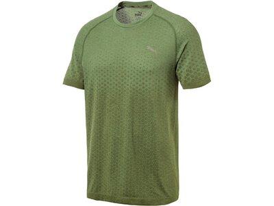 PUMA Herren T-Shirt Evostripe Evoknit Tee Grün