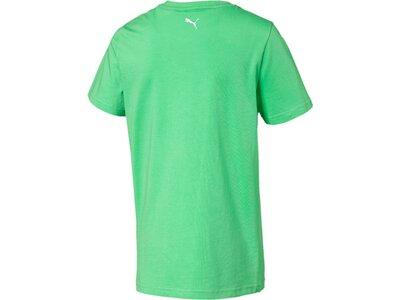 PUMA Kinder T-Shirt Alpha Graphic Tee B Grün
