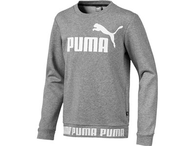 PUMA Kinder Sweatshirt Amplified Crew B Grau