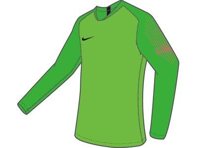 NIKE Herren Long-Sleeve Fußball Jersey M NK GARDIEN II GK JSY LS Grün