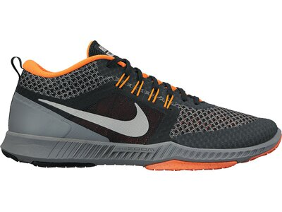NIKE Herren Workoutschuhe Nike Zoom Domination Tr Grau