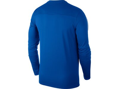 NIKE Kinder Shirt DRY PARK18 CREW TOP Blau